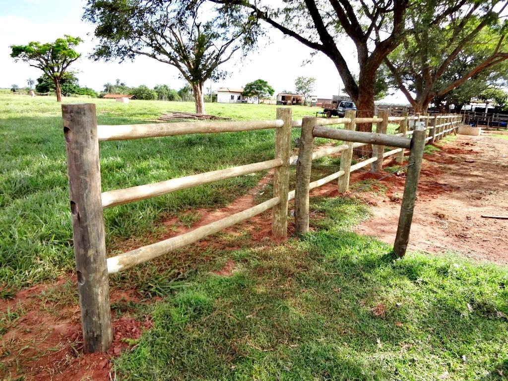 cerca de eucalipto tratado para jardim : cerca de eucalipto tratado para jardim:Fotos da cercas de equinos, serviço em andamento na Fazenda Cabeceira